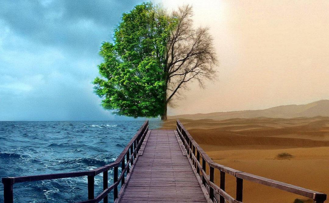 Escassez ou abundância: o que você atrai para você?